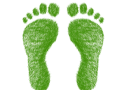 green - redigo